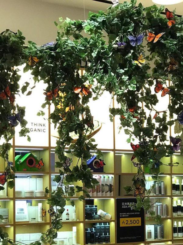 植物租售-P002 場內佈置